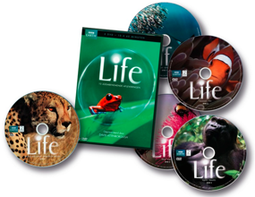 ASN Bank Life DVD Box